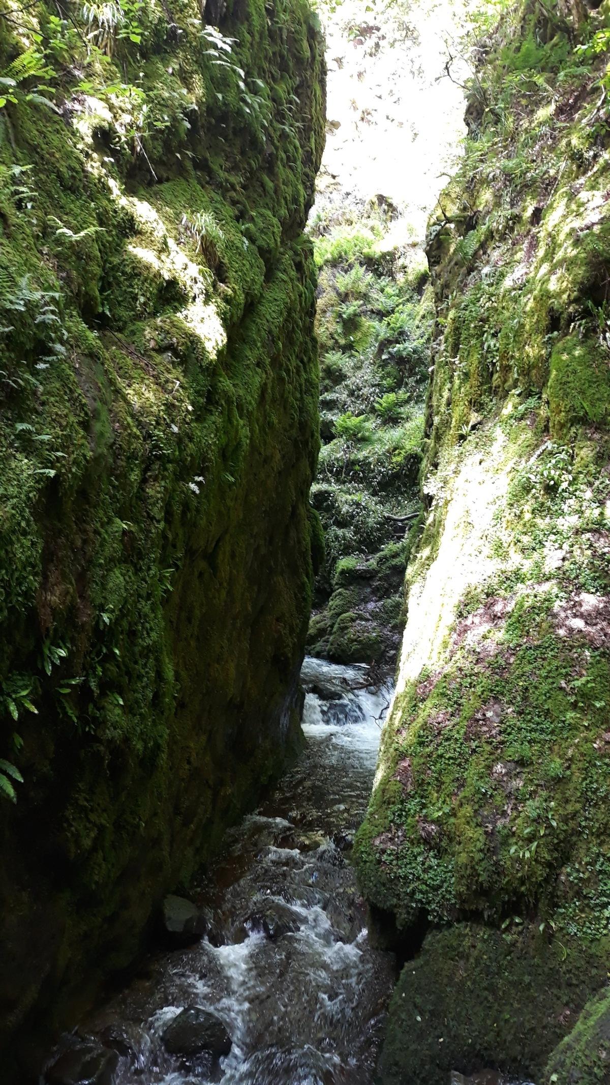 River Sonnet